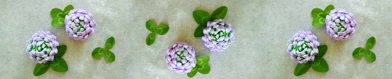 Zala_Zagoricnik_DIY_FIMO_Polimer_clay_clover_flower_11