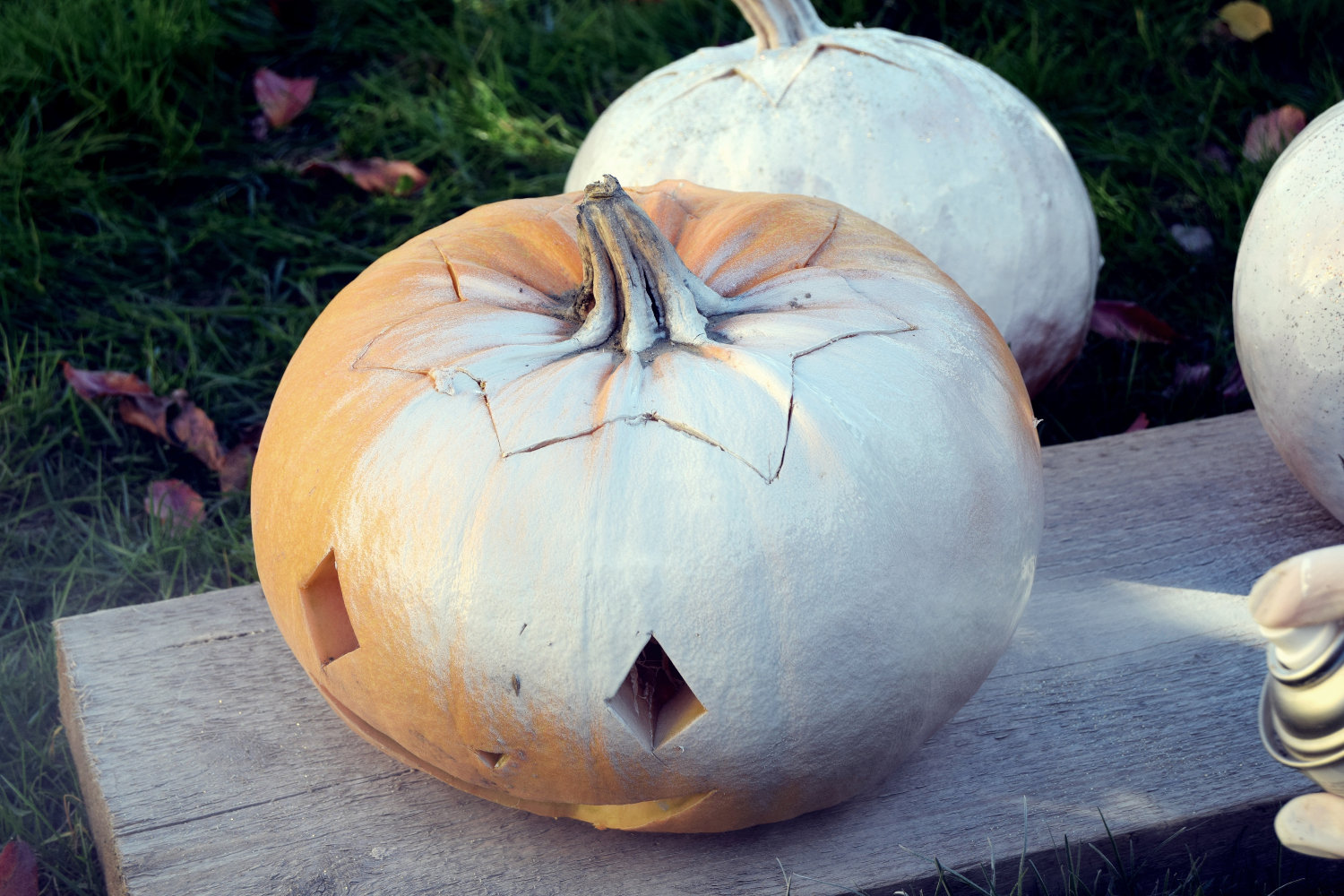 zalabell_happy_halloween_craving_pumpkins_10