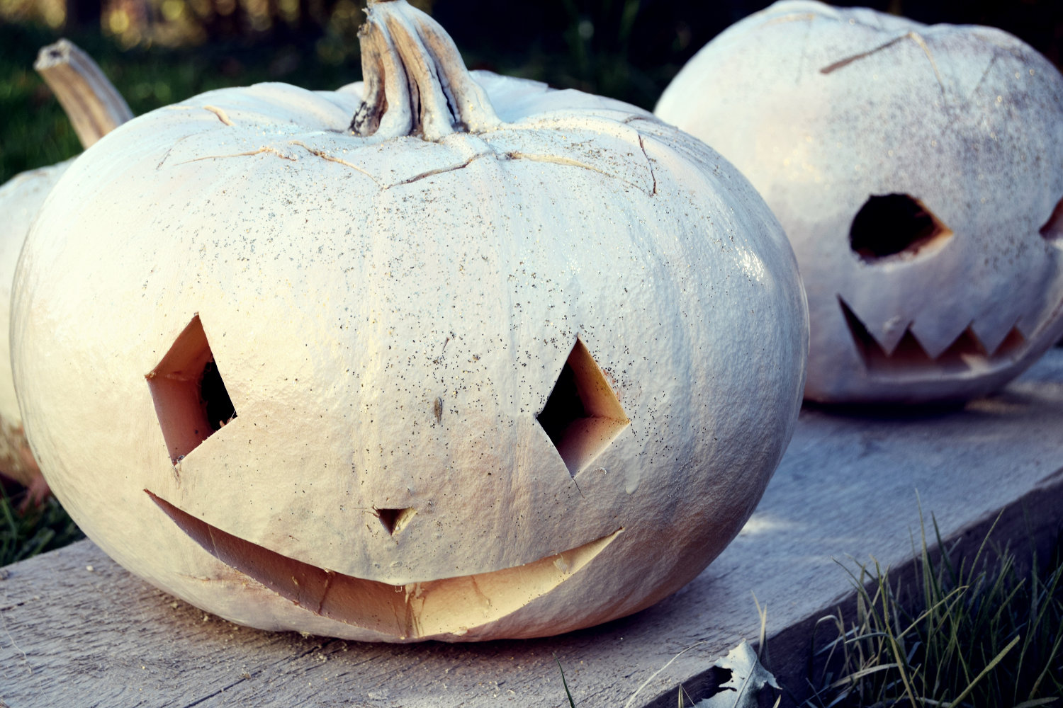 zalabell_happy_halloween_craving_pumpkins_12