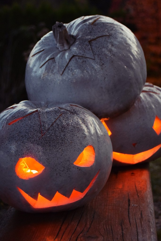 zalabell_happy_halloween_craving_pumpkins_21
