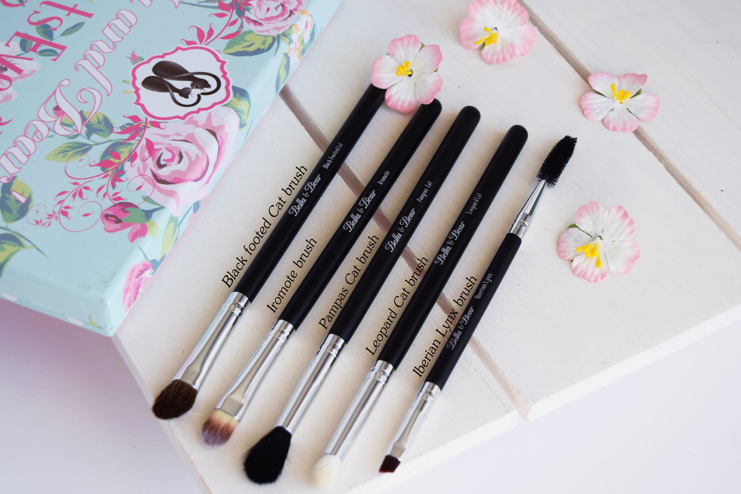 bella_and_bears_cats_eyes_eye_brush_set_zalabell_beauty_review_6
