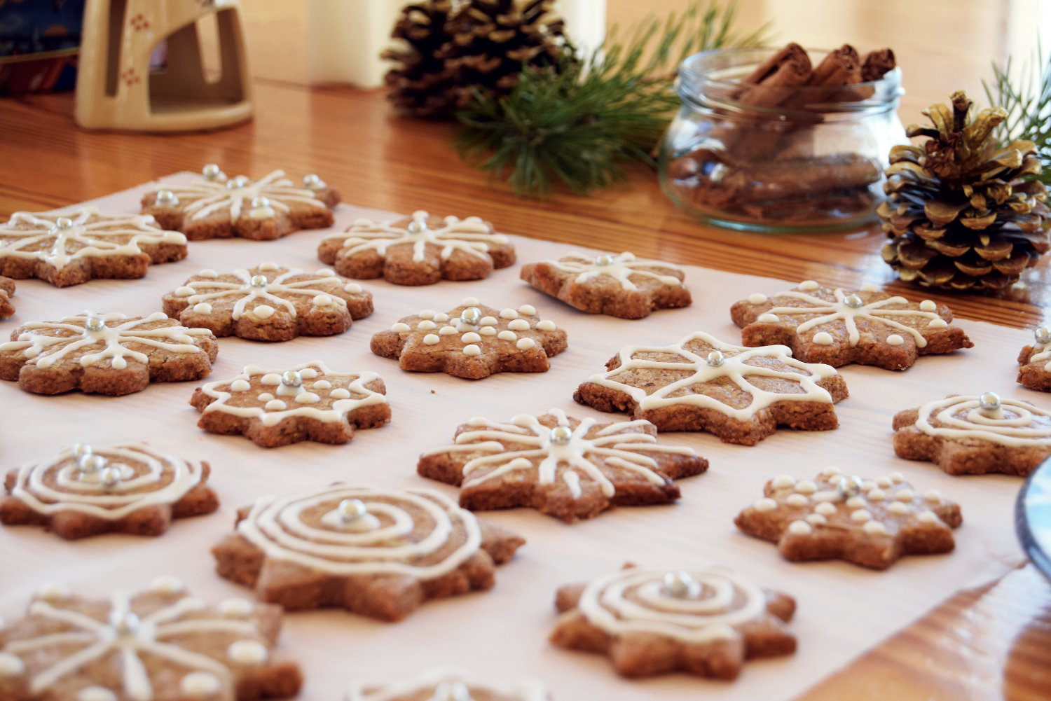 sugar_icing_decorating_cookies_gingerbread_christmas_5
