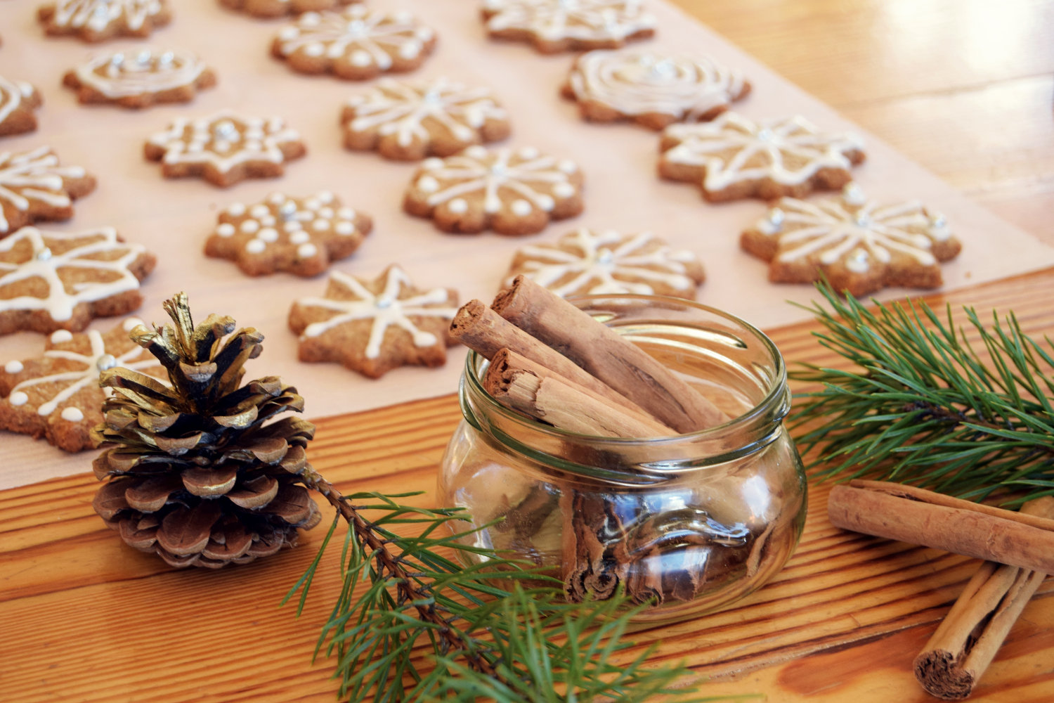 sugar_icing_decorating_cookies_gingerbread_christmas_8