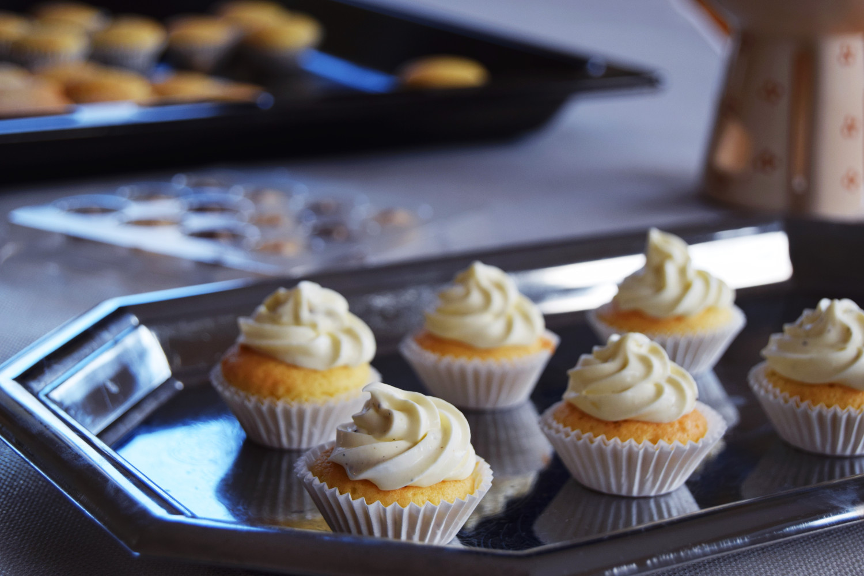 cute_mini_cupcakes_recipe_zalabell_1