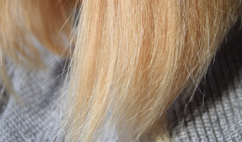 Moroccanoil_hair_Conditioner_Shampoo_Zalabell_beauty_7 - Copy