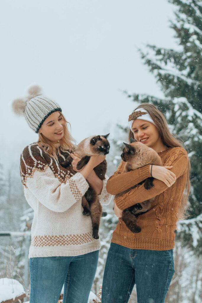 snow, portrait, cat, photography