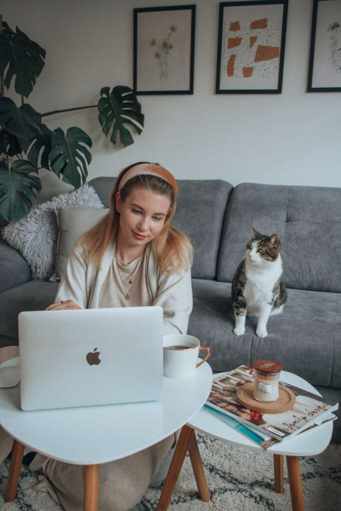 blog, macbook, cat, home office